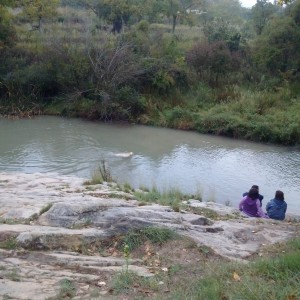 Perros bañandose en Río Sargal Viver Cabañas Caudiel